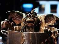 Gremlins-2. The New Batch