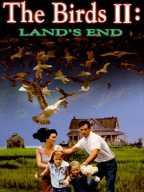 Birds-2. The Land's End