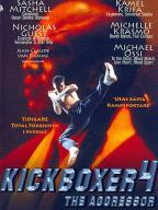 Kickboxer-4: The Aggressor
