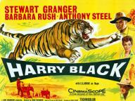 Harry Black