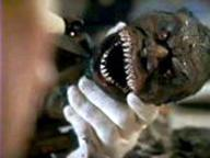 Trilogy of Terror-2
