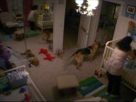 Paranormal Activity-2